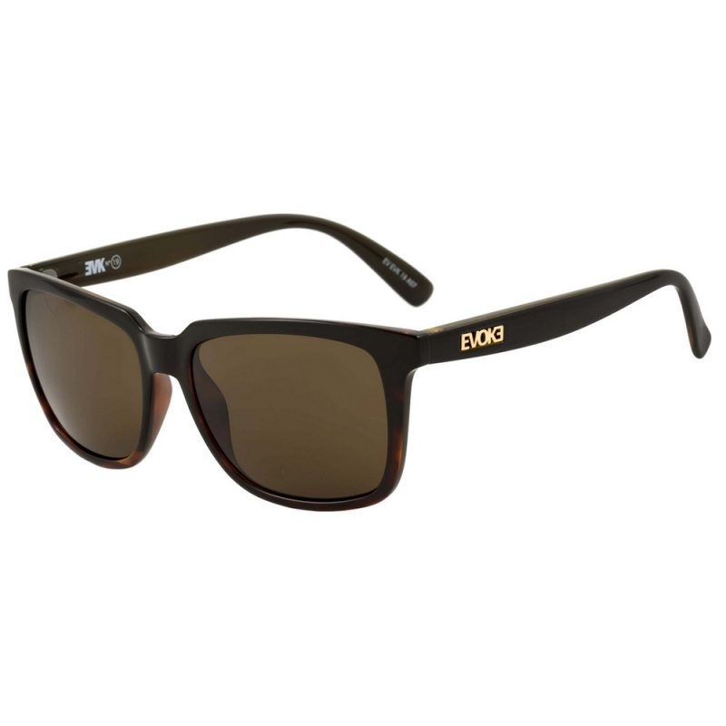Óculos Evoke Evk 19 Black Demi Shine - Loja HIP b38c73ab44